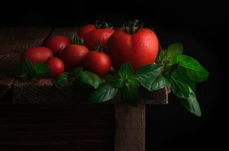 Red ripe tomatoes with drops of water and leaves of fresh basil on a wooden table. Concept of Organic Food. Rural style. Reklamní fotografie