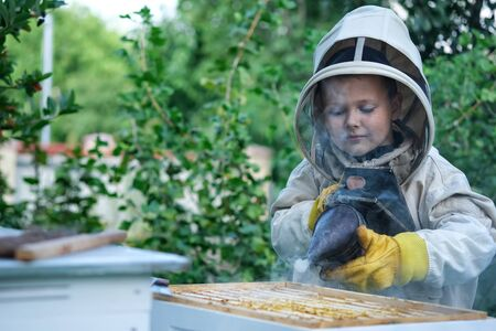 The boy beekeeper works on a beehive at the hive. Apiary. Bees Apiculture.