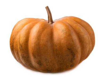 Ripe fresh orange pumpkin isolated on a white background Reklamní fotografie