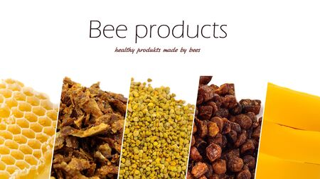 A variety of bee products. Honey, pollen, propolis, bee bread, wax. Apitherapy. Healthy products made by bees.