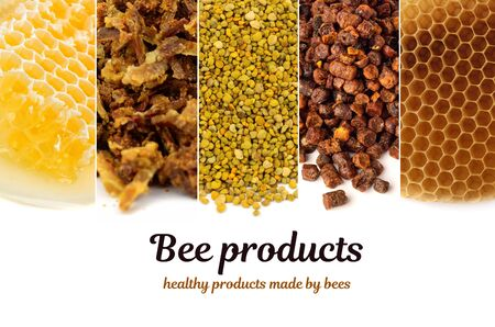A variety of bee products. Honey, pollen, propolis, bee bread, wax. Apitherapy. Healthy products made by bees