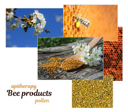 Pollen. The healing properties of pollen. As bees collect pollen. Apitherapy. Photo collage on beekeeping theme Reklamní fotografie