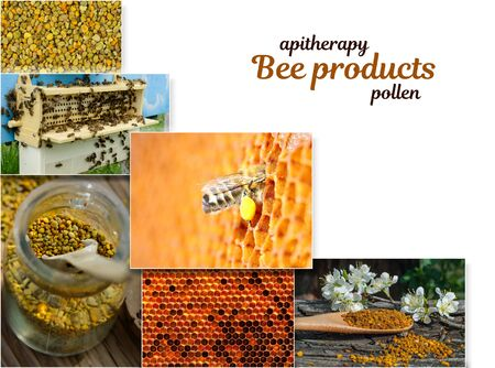 Pollen. The healing properties of pollen. As bees collect pollen. Apitherapy. Photo collage on beekeeping theme 写真素材