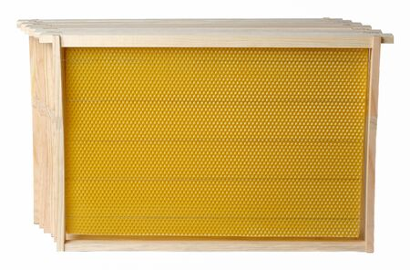 Frame for honeycomb of bees. Beeswax. Wax base for honey bee rebuilding on a white background. Honeycombs Reklamní fotografie