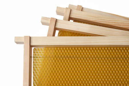 Frame for honeycomb of bees. Beeswax. Wax base for honey bee rebuilding on a white background. Honeycombs. 写真素材