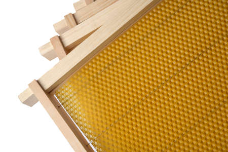 Frame for honeycomb of bees. Beeswax. Wax base for honey bee rebuilding on a white background. Honeycombs. Reklamní fotografie