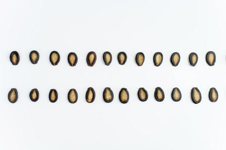 semilla: semillas de sandía en el fondo blanco