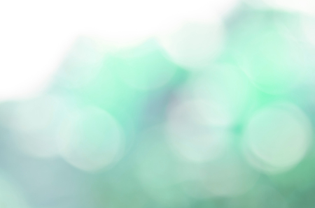 Abstract blur background. Morning light with natural bokeh for background usage.