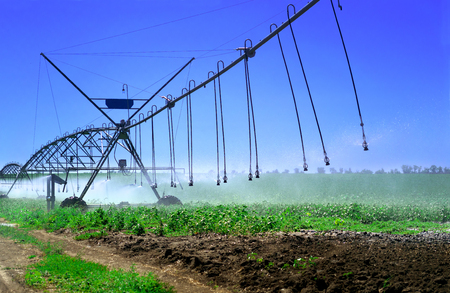close-up irrigation system, soil moistening for plant growth and yield a large yield Reklamní fotografie