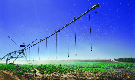 close-up irrigation system, soil moistening for plant growth and yield a large yield
