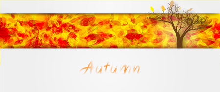 Background on autumn theme. Fallen leaves of red and yellow tones. Tree silhouette