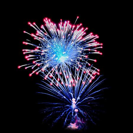 검정 배경에 밤 불꽃 놀이 다양 한 색상입니다. 장착에 사용할 수 있습니다.