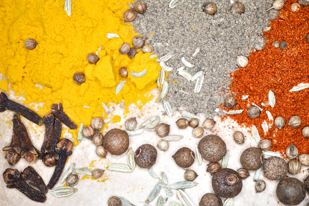 finocchio: Mortar for spices, garlic and Bay leaf. Handful of paprika black pepper and turmeric. Scattered fennel and coriander. Allspice and cloves. Archivio Fotografico