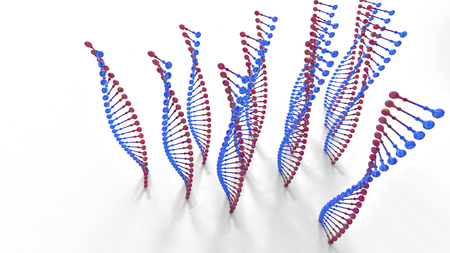 3D rendering. Model of the DNA molecule. A stylized model of the molecule. The human genome. Heredity of living organisms. Research and analyzing biological liquids. On a white background.