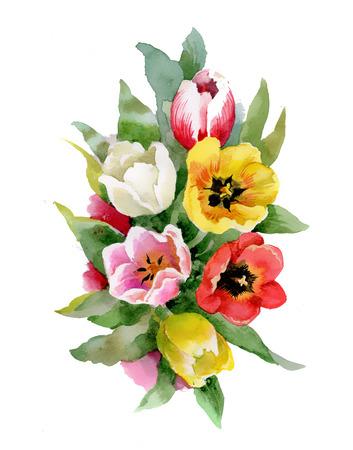 Watercolor tulips bouquet photo
