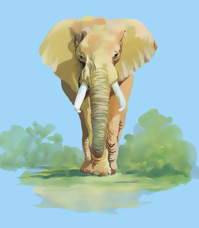 Watercolor elephant on blue background photo