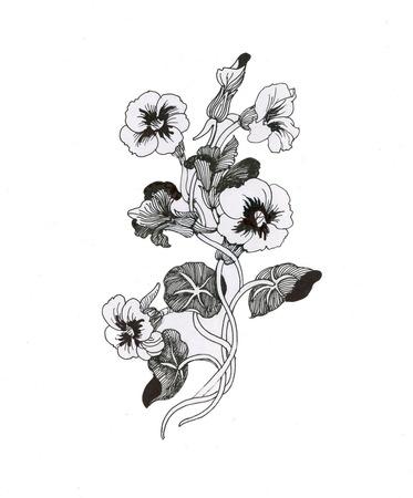 아름다운 그린 꽃 스케치