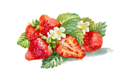 Watercolor strawberries with flowers Vector