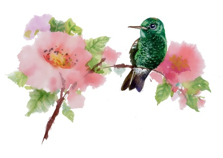 Wild bird on twig with flowers photo