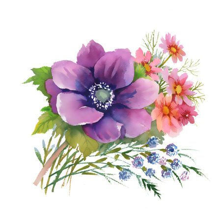 Watercolor illustration of beautiful bouquet of anemone flowers Vector