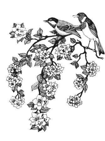 Illustration of birds on branch of cherry tree on white background