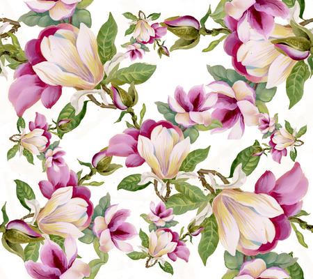 Colorful floral seamless pattern on white background Vector