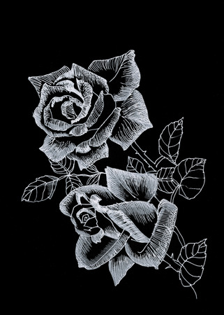 Hand drawn rose flowers on black background photo