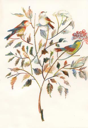 Dessin de beaux oiseaux et fleurs aux couleurs vives Illustration
