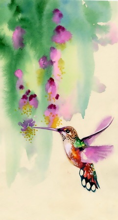 Drawing of colibri bird and flowers