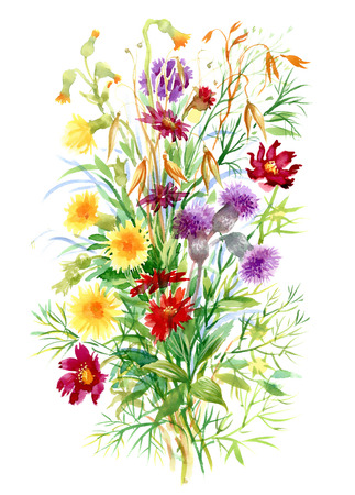 Colorful watercolor wildflowers illustration on white background Çizim