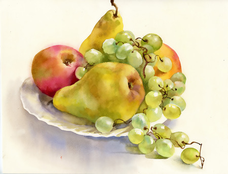still: Still life with fruit in a plate