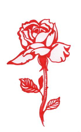 Handdrawn rosa roja en el estilo de dibujo, aisladas sobre fondo blanco Ilustración de vector