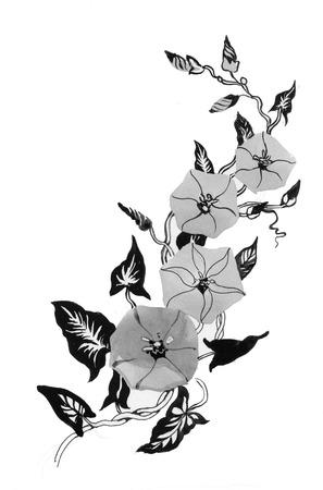 bindweed: Watercolor bindweed, black and white Stock Photo