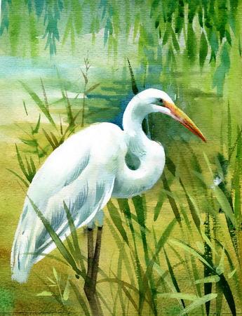 Watercolor heron in water Illustration