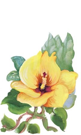 Colorful spring wildflowers illustration illustration