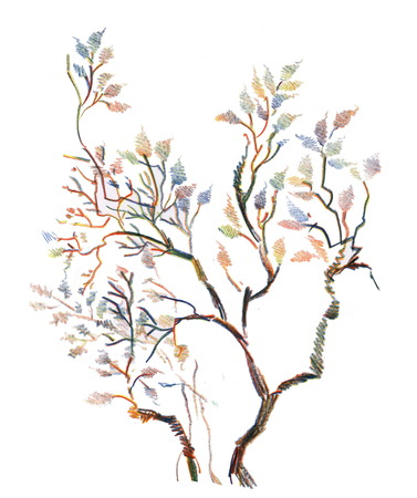 twigs: Spring tree twigs illustration