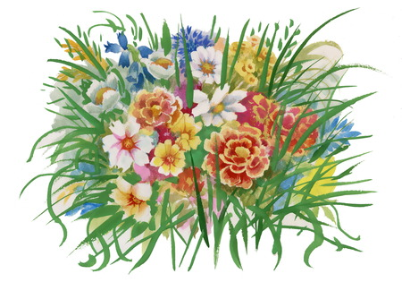 wildflowers: Colorful spring wildflowers illustration
