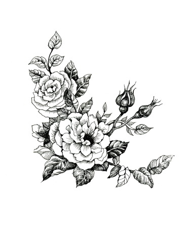 Watercolor flowers illustration in black and white Vettoriali