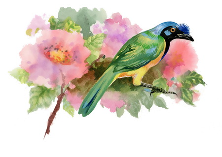 Watercolor illustration of bird on branch with pink flowers Zdjęcie Seryjne