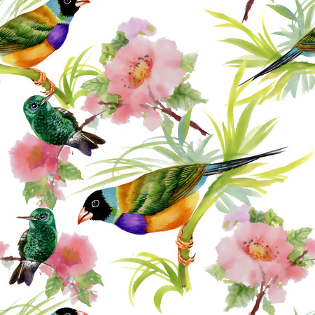 tropical birds: Watercolor seamless pattern with tropical birds and flowers on white background