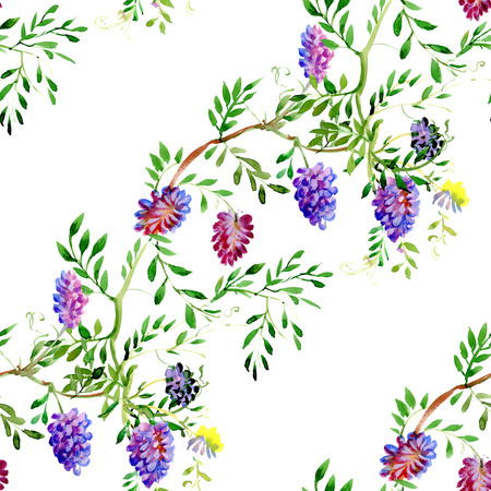 Wild flowers seamless pattern on white background Vector