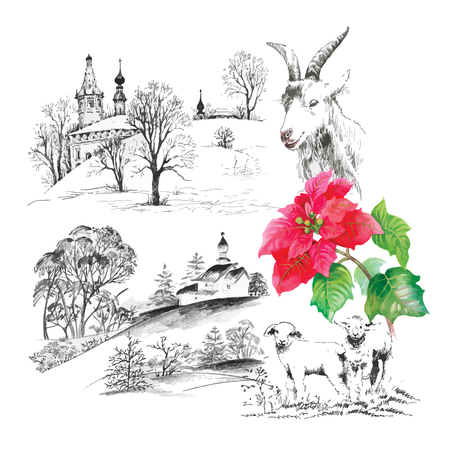ewes: Goats and lambs on the field seamless pattern on white background