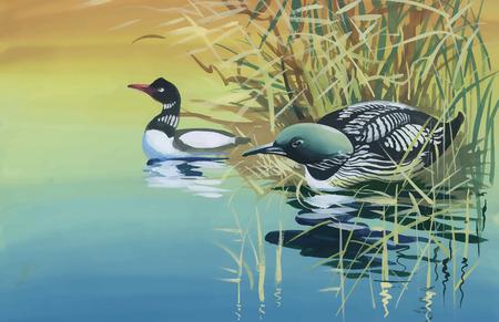 Gänse Herde Schwimmen am Teich Aquarell Vektor-Illustration.