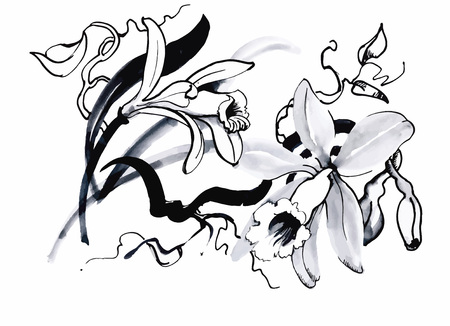 Black Line Flower Drawing : Iris flower line drawing back vector stock photo