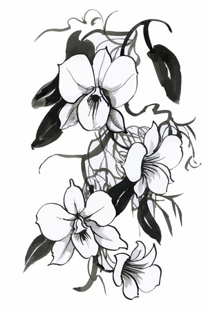 Beautiful monochrome, black and white flower isolated. Hand-drawn contour lines and strokes 일러스트