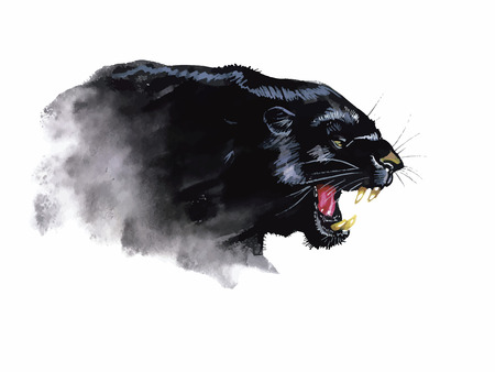 Panther hand painted watercolor illustration isolated on white background.