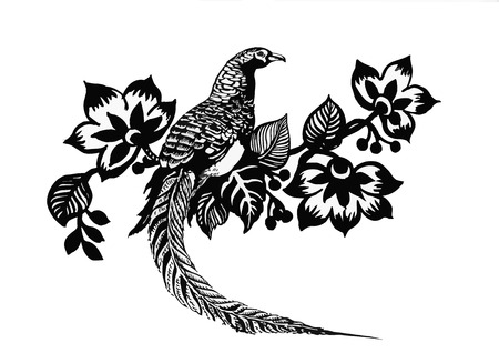 pheasant: Hand drawn pheasant in the grass and flowers, isolated on white background.