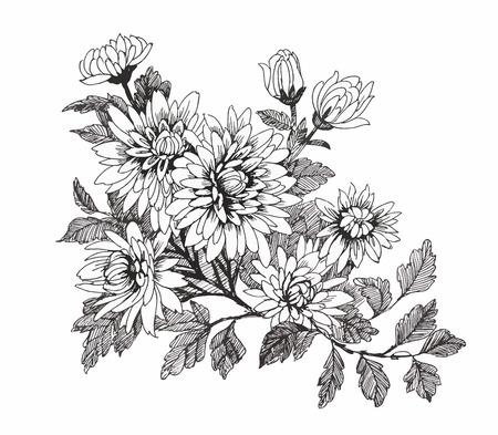 Цветы картинки чёрно белые нарисованные
