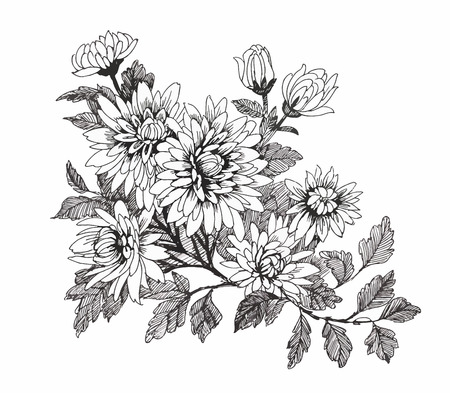 Картинки цветы черно-белые нарисованные