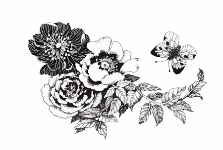 black and white line drawing: Beautiful monochrome, black and white flower isolated. Hand-drawn contour lines and strokes Illustration